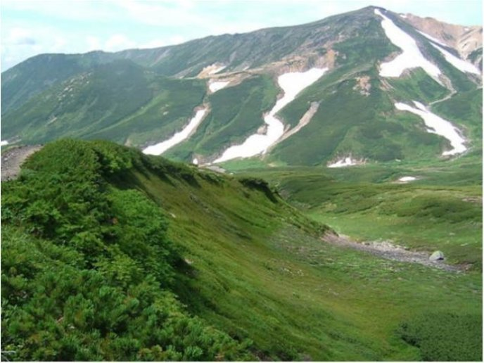 Daisetsusan national park 635 476