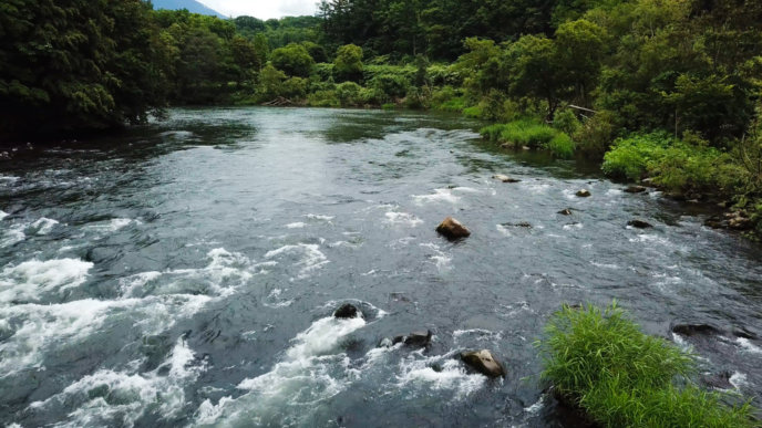 Shiribetsu River 4