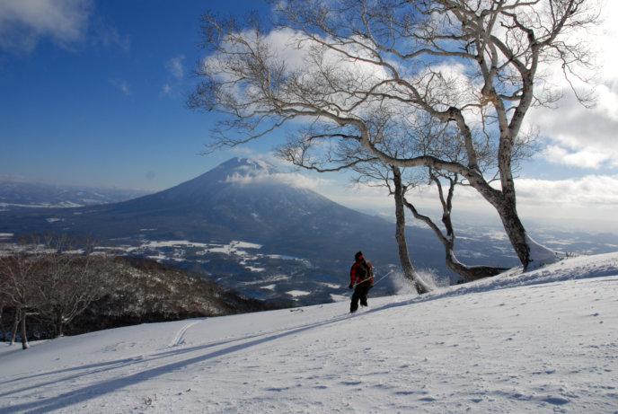 Blue Bird Niseko Spring Sky Skiing Yotei