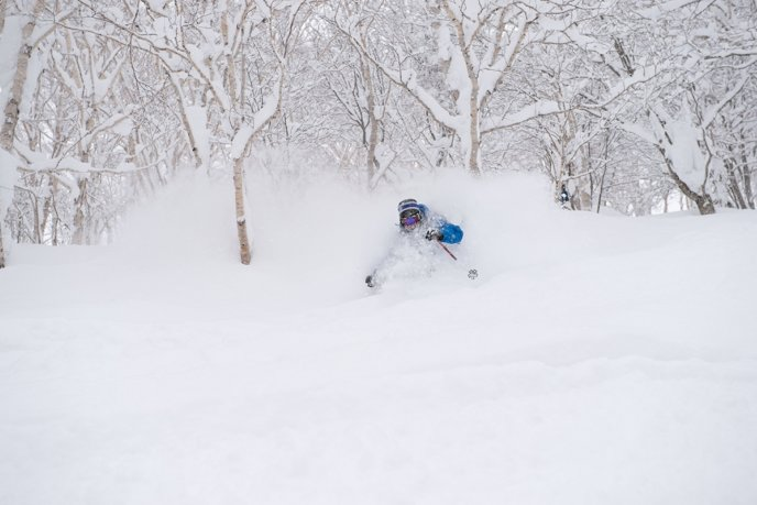 niseko-powder-vinnie