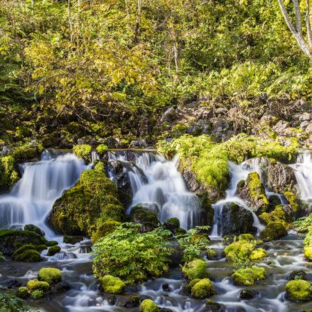 ニセコ近隣の天然湧き水ポイント