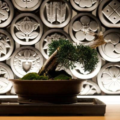 Interior at Kumo Restaurant