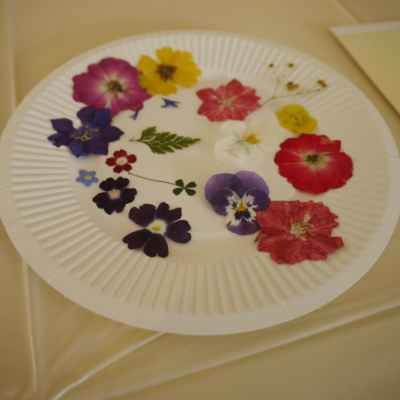 Botanic Art Workshop Pressed Flowers