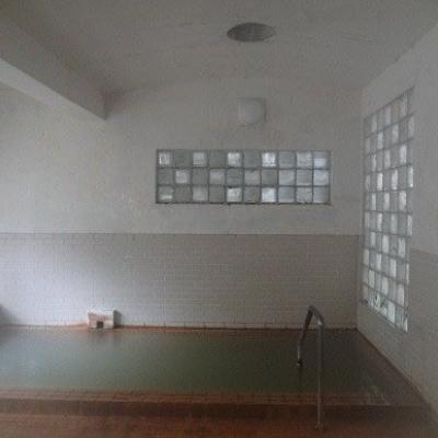 Koikawa Ryokan Onsen Inside Pool
