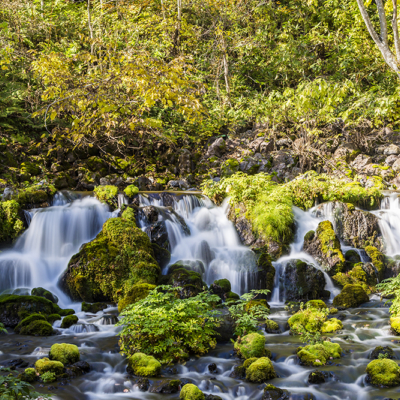 Fukidashi Park Springs 3