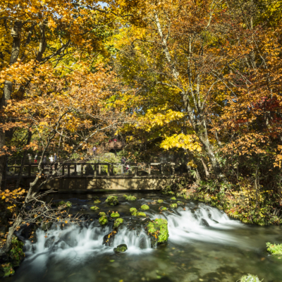 Fukidashi Park Springs