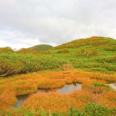 Mt Shirakaba Shakunage Numa Hike Towards Chisenupuri