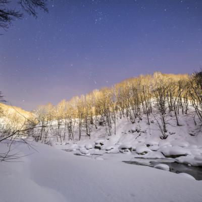 Snowshoeing with NAC in Niseko
