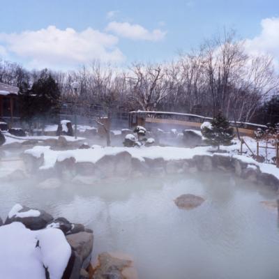 Niseko Grand Hotel Winter Outdoor Pool Rotenburo
