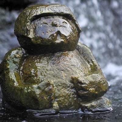 Kappa in waterfall