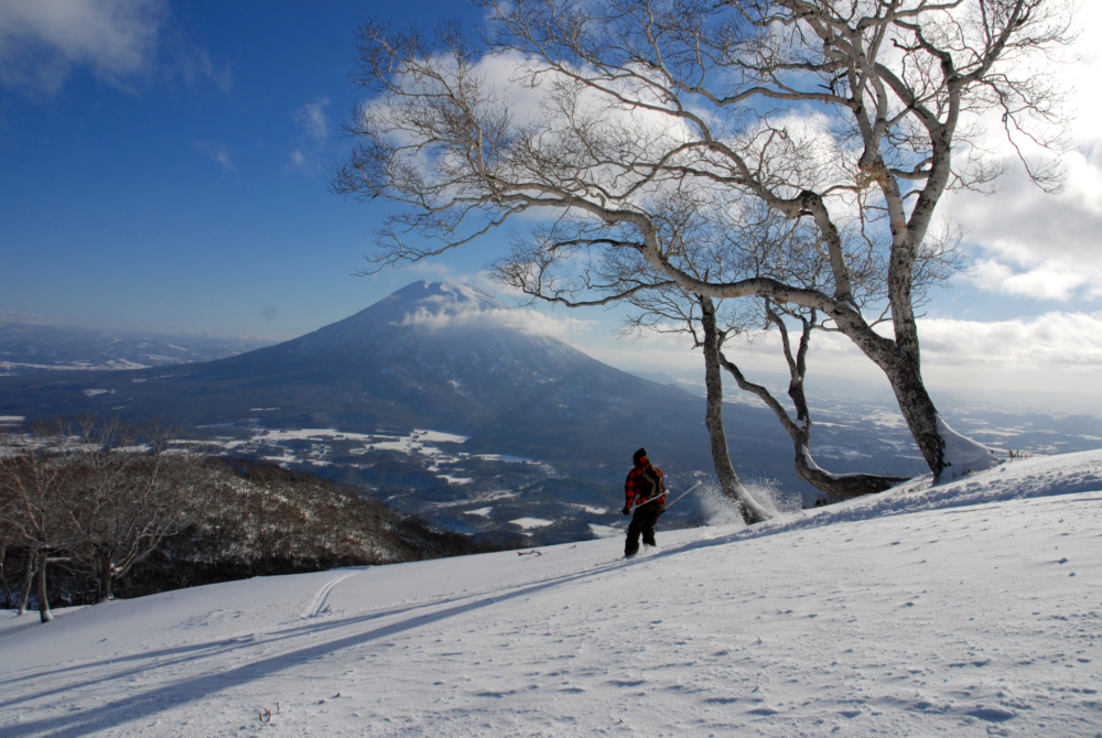 Image result for Niseko in winter