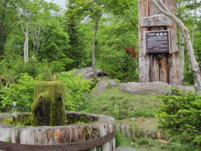 Niseko Sakamoto Park Spring Water 3