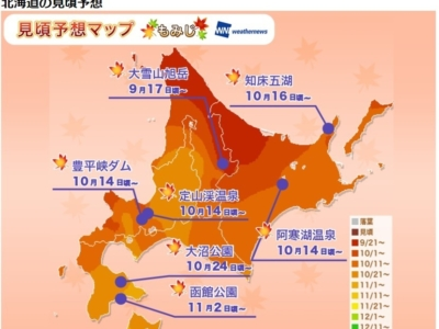 Koyou Forecast 2017