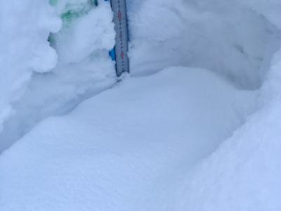 Snow Report 10 Feb2019