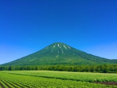 Summer Niseko 2
