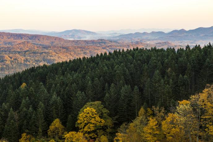 All The Colours Of Autumn Hidde Hageman Photo